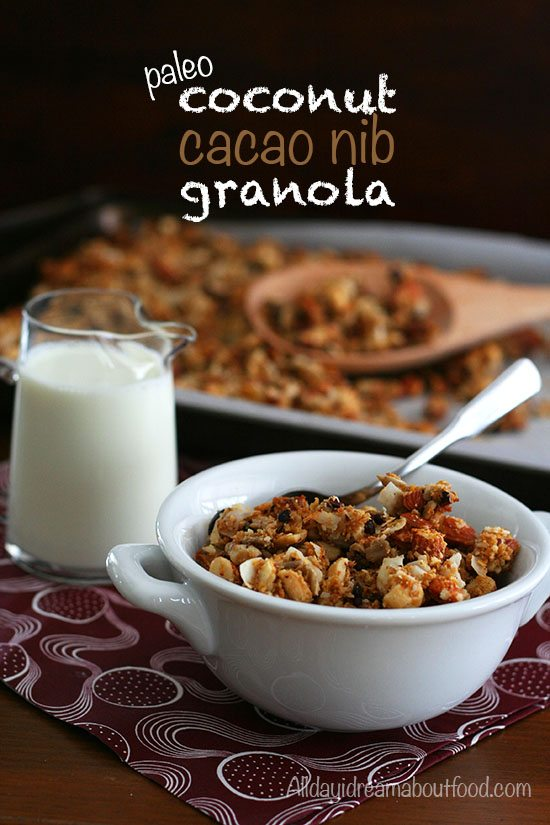 Paleo Low Carb Coconut Granola