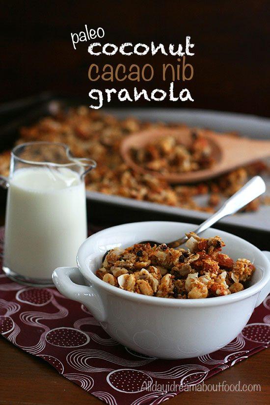 Paleo Low Carb Coconut Granola